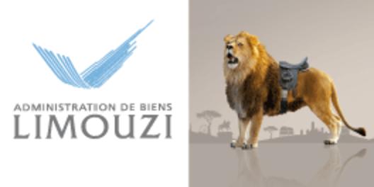 Limouzi-foncia
